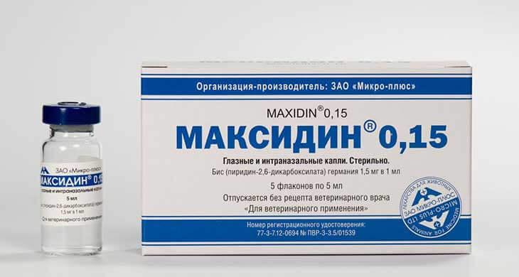 Мелоксикам: показания и противопоказания, дозировка, побочные эффекты
