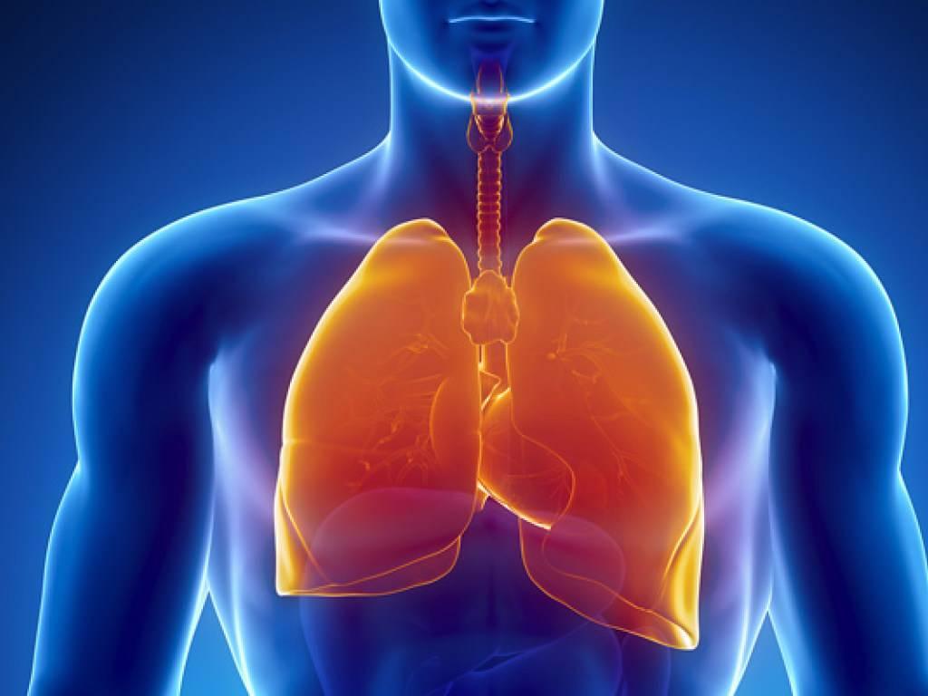 Профилактические меры при заболеваниях органов дыхания