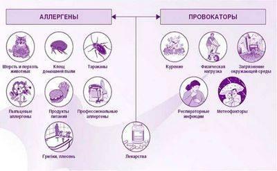 Питание при астме
