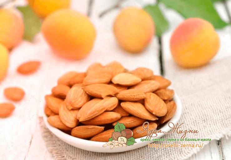 Можно ли есть грецкие орехи при похудении?