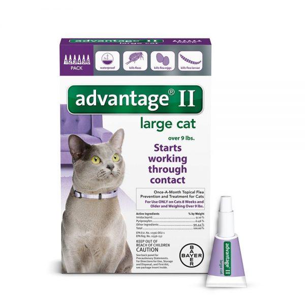 Стронгхолд для кошек – инструкция по применению препарата