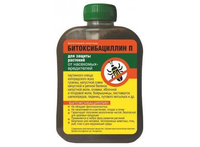Битоксибациллин — инструкция по применению против гусениц, личинок насекомых и клещей
