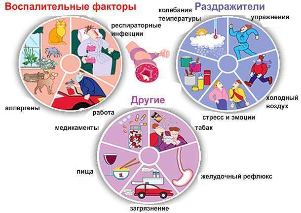 Бронхиальная астма [причины возникновения]