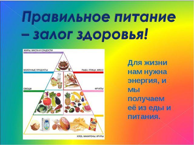 Рациональное питание как фактор сохранения и укрепления здоровья. здоровый образ жизни. режим приема пищи.