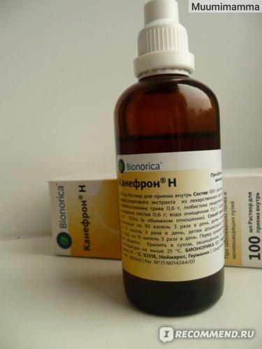 Инструкция по применению препарата канефрон н