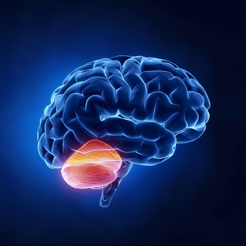 Атаксия фридрейха: причины, симптомы, диагностика и лечение