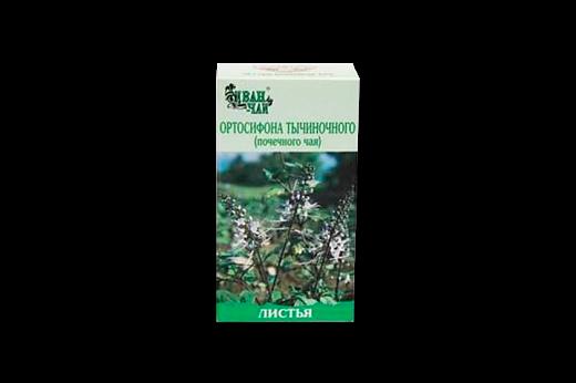 Ортосифон: полезные свойства, противопоказания, польза и вред