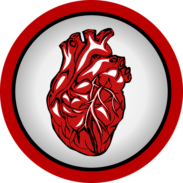 Овальное окно в сердце у детей: характеристика, причины, диагностика и методы лечения