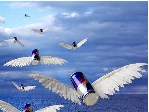"""Исследовательская работа по биологии """"влияние энергетических напитков на живые организмы"""""""