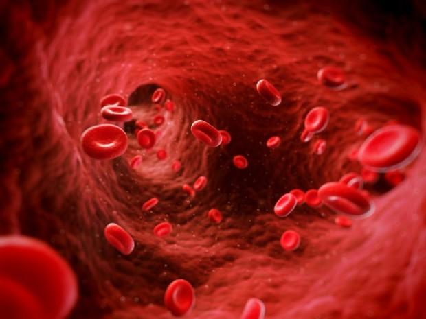 Густая кровь: топ-8 продуктов для разжижения крови