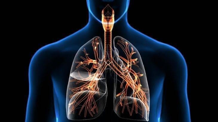 Диагностика и течение бронхиальной астмы