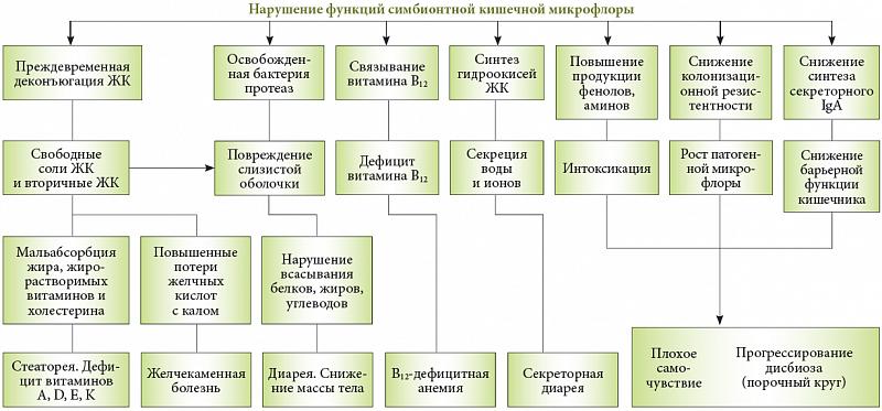 Диспепсия кишечника симптомы