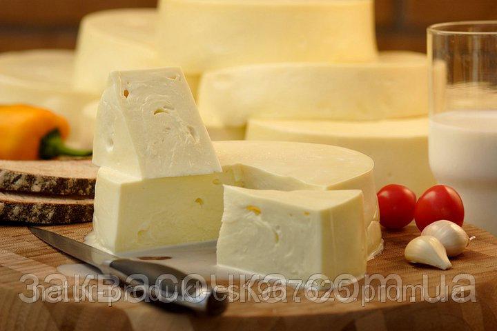 Сыр: польза и вред для организма | польза и вред