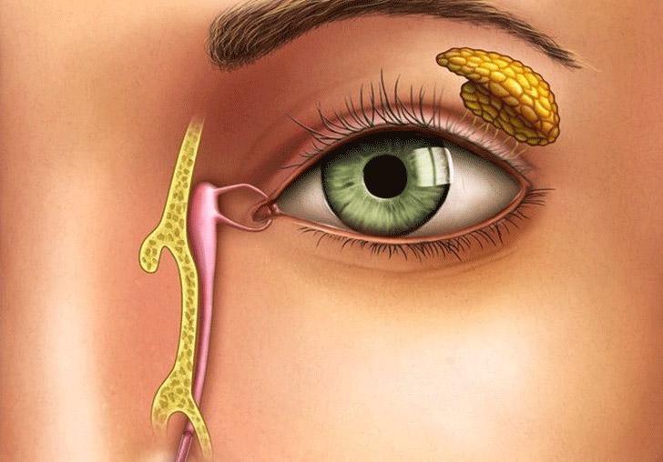 Лечение слезной железы фото