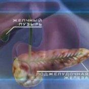Поджелудочная железа симптомы и лечение диета камни в