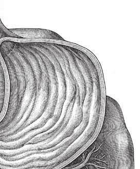 Актуальность темы бронхиальная астма