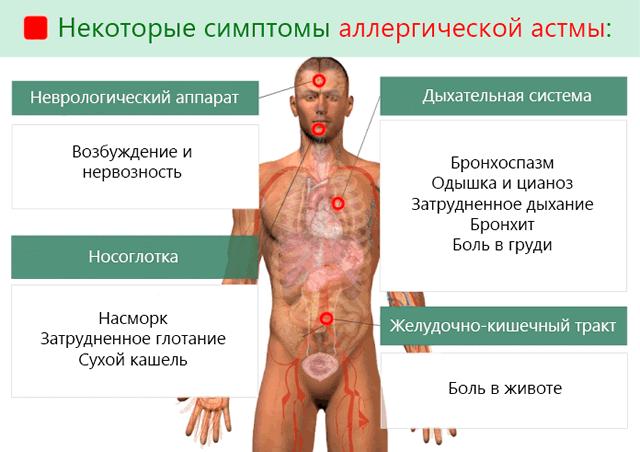 Астма: причины, признаки и симптомы у взрослых, лечение