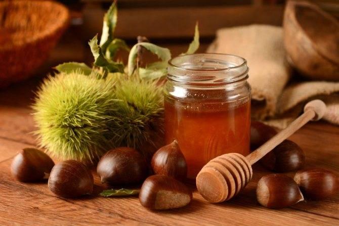 Рецепты редьки с мёдом — бальзама от кашля