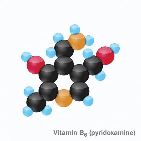 Пабк или парааминобензойная кислота: что это такое, как влияет на организм и в каких продуктах содержится