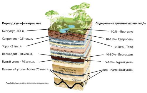 Как правильно применять гумат калия: пошаговая инструкция для огородников