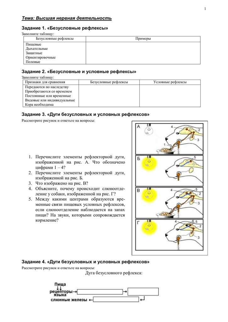 Рефлексы условныебезусловные рефлекс – ответная реакция организма на внешние раздражители. осуществляется при помощи нервной системы. - презентация