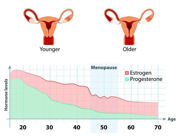 Климакс у женщин — что это такое, признаки, симптомы, возраст наступления и лечение климакса