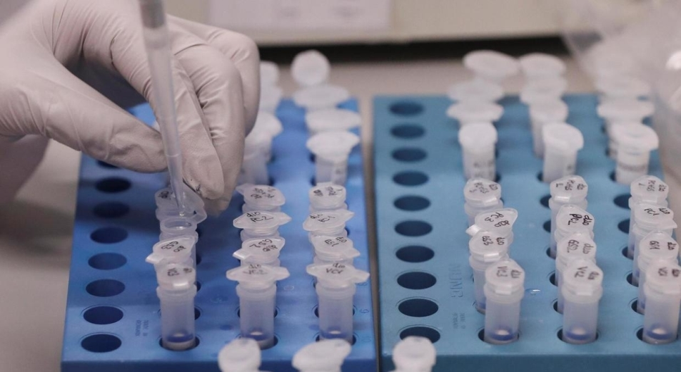 В китае начали производить лекарство против коронавируса // нтв.ru