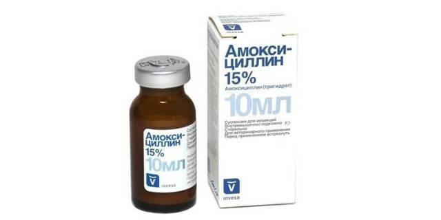 Антибиотики при астматическом бронхите у взрослых