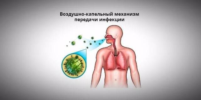 Грибковая пневмония: причины заболевания, основные симптомы, лечение и профилактика