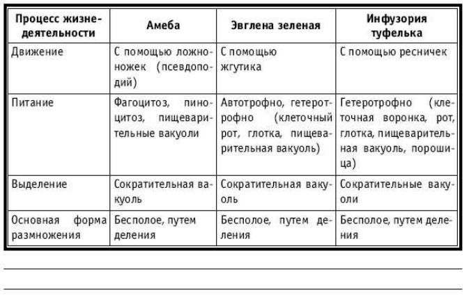 пиратский корабль сравнительная таблица простейших фото значение развития порта входит