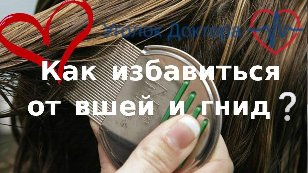 Какие заболевания передают вши