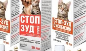 Стронгхолд: назначение препарата, инструкция по применению для кошек и противопоказания