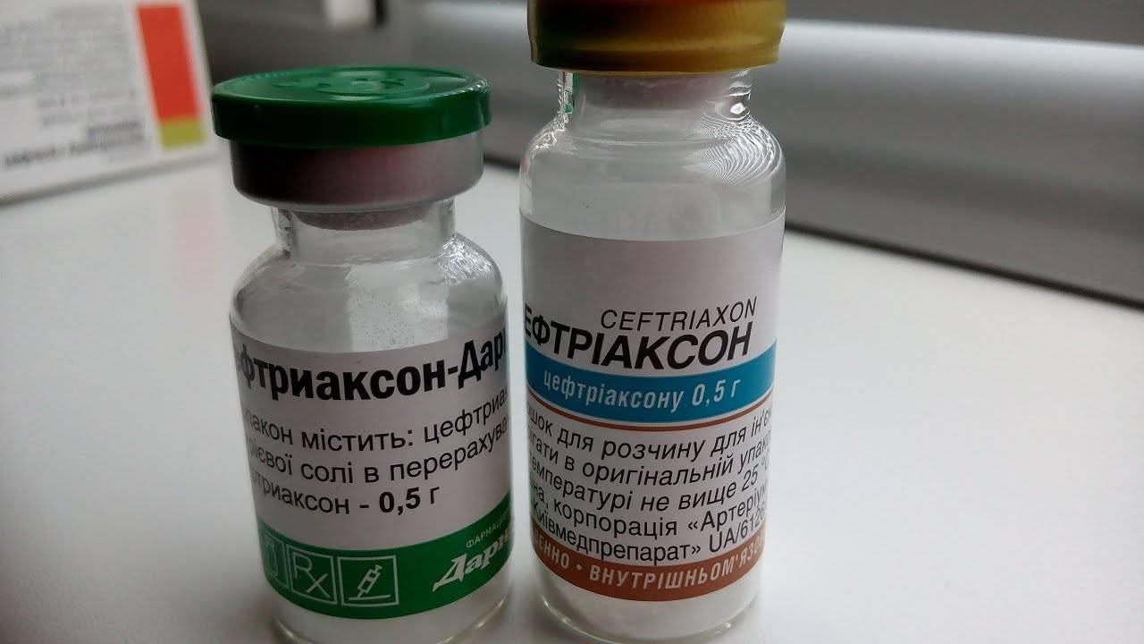 """""""бициллин-5"""": инструкция по применению, как разводить, аналоги и отзывы"""