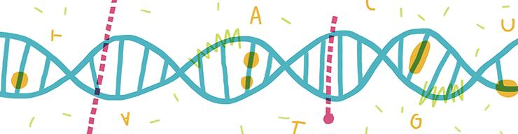 Комфортная антиутопия: как мир примиряется с генной модификацией людей | статьи | известия