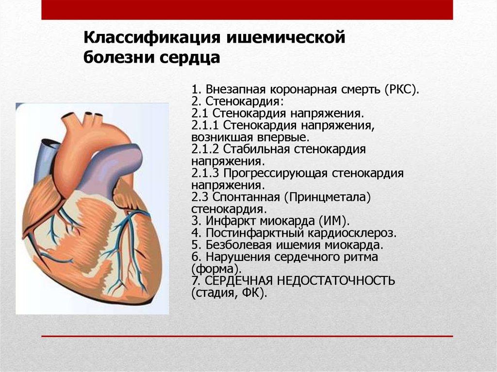 Что такое постинфарктный кардиосклероз, причины и симптомы, лечение и потенциально смертельные последствия