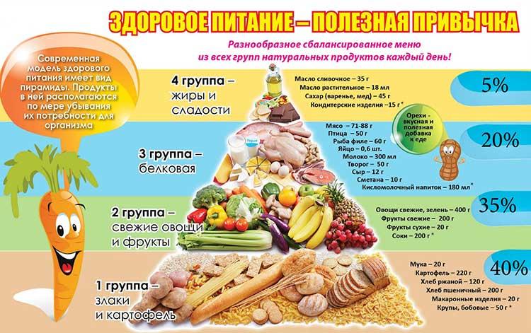 Лечебное питание: организация, принципы, диеты