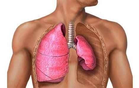 Признаки туберкулеза у взрослых