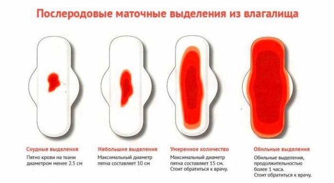 По следам... выделения после родов. кровянистые выделения после родов и кесарева сечения
