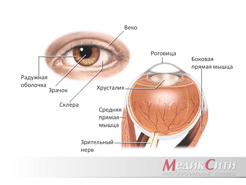 Виды кератитов глаза