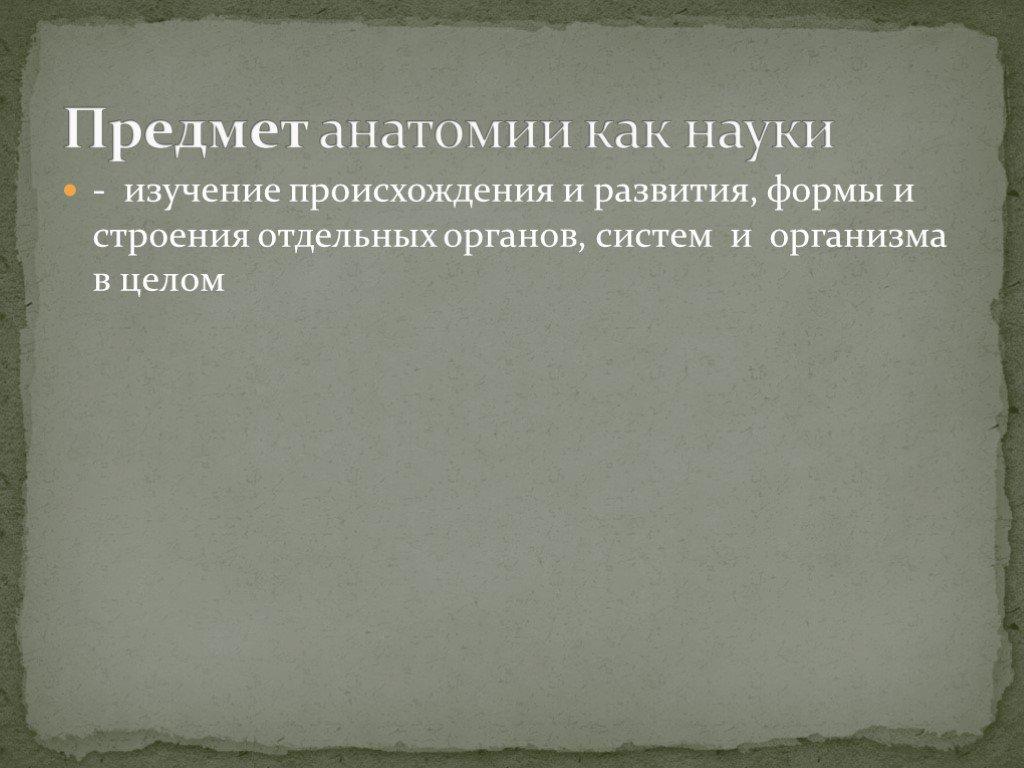 Анатомическая терминология