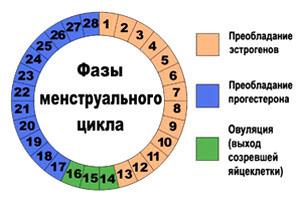 У кого какие успешные методы зачатия были - запись пользователя zabava (zzabava) в сообществе зачатие - babyblog.ru