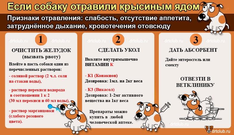 Москва, изониазид
