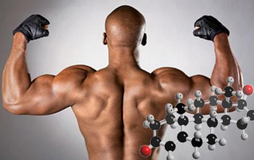 Тестостерон ципионат - testosterone cypionate - qwe.wiki