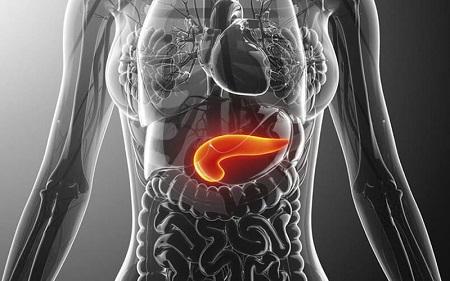 Поджелудочная железа: симптомы и причины заболевания, лечение медикаментами и диета