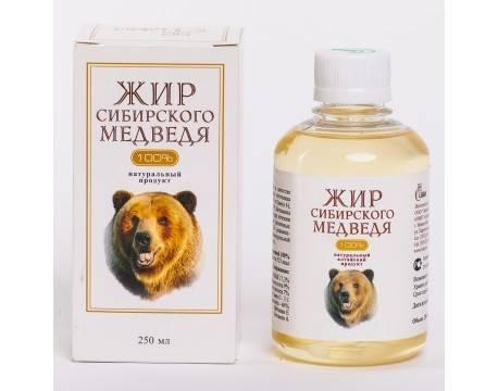 Польза и вред медвежьего жира, отзывы, как принимать