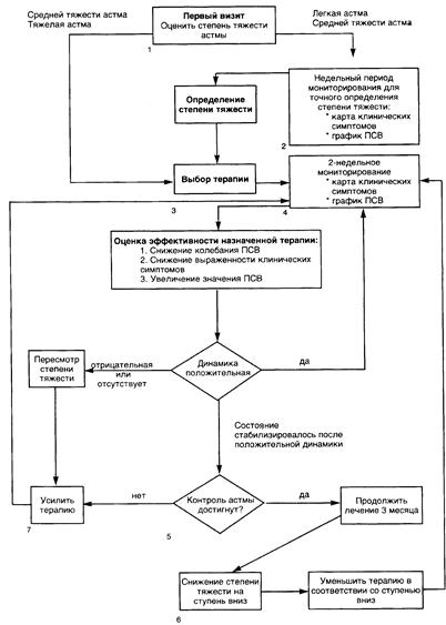 Лфк при бронхиальной астме: комплекс реабилитационных упражнений
