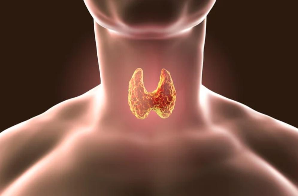 Щитовидная железа и психоз