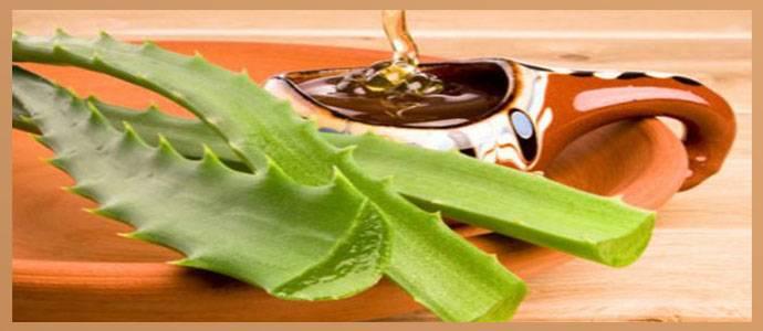 Какие продукты важно употреблять при остром лейкозе?