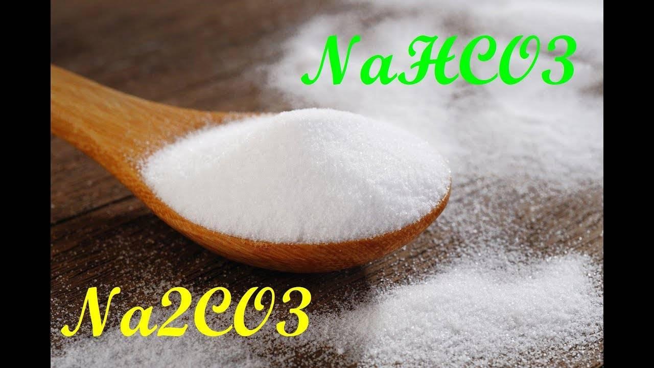 Польза пищевой соды для волос - рецепты ухода, польза и вред, отзывы