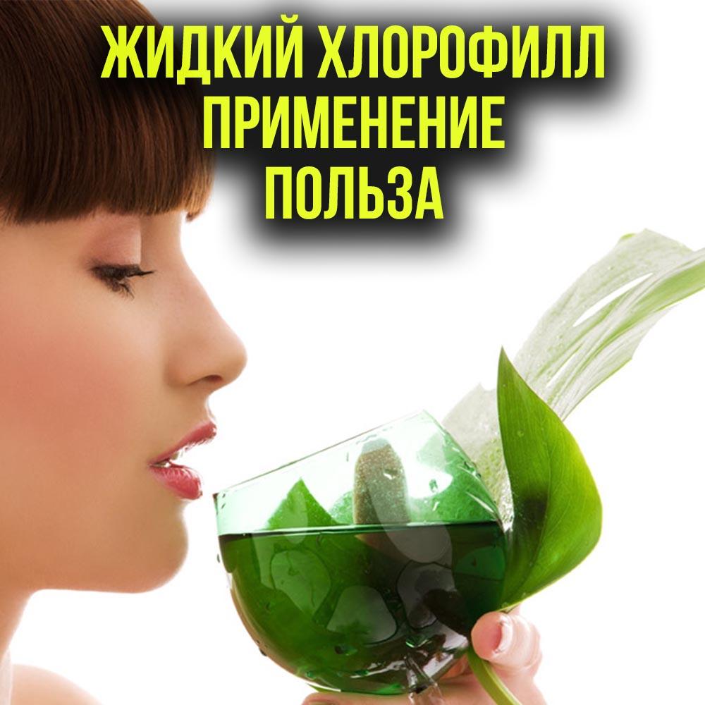 Чем полезен хлорофилл для человека? состав и особенности жидкого препарата, цены и отзывы